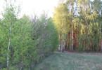 Działka na sprzedaż, Gostynin, 19400 m²