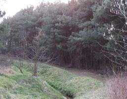 Działka na sprzedaż, Płock, 45400 m²