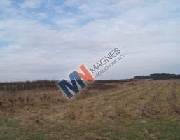 Działka na sprzedaż, Michrówek, 6000 m²