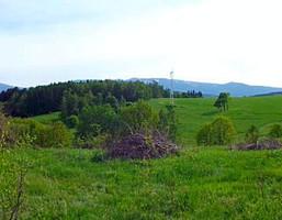 Działka na sprzedaż, Wojcieszyce, 8000 m²