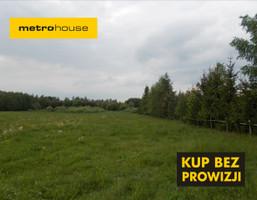 Działka na sprzedaż, Dobrzyki, 21770 m²