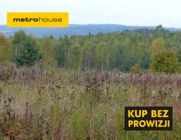Działka na sprzedaż, Wysoka Wieś, 42815 m²