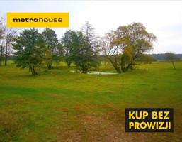 Działka na sprzedaż, Wolbórz, 118120 m²