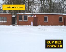 Magazyn na sprzedaż, Hartowiec, 28119 m²