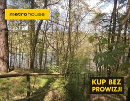 Działka na sprzedaż, Inowłódz, 29040 m²