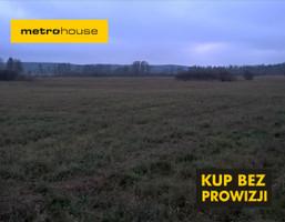 Działka na sprzedaż, Lewiczyn, 47800 m²