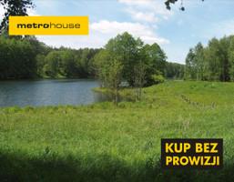 Działka na sprzedaż, Zabrodzie, 16481 m²