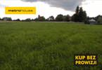 Działka na sprzedaż, Kopanka, 3900 m²