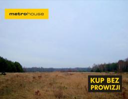 Działka na sprzedaż, Huta Dłutowska, 3074 m²