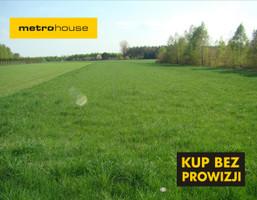 Działka na sprzedaż, Nowy Ludwików, 4300 m²