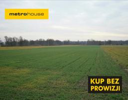 Działka na sprzedaż, Kalisz, 11100 m²