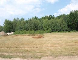 Działka na sprzedaż, Skierniewice Balcerów, 1000 m²