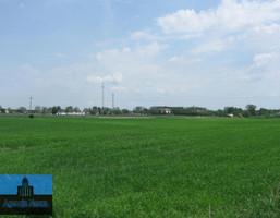 Działka na sprzedaż, Żuromin, 35826 m²