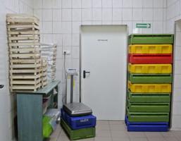 Hala na sprzedaż, Zieleniewo Szczecińska, 550 m²
