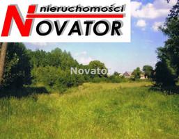 Działka na sprzedaż, Lipienica, 7000 m²