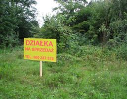 Działka na sprzedaż, Wilkowo, 5281 m²