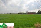 Działka na sprzedaż, Żórawina, 40000 m²