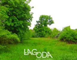 Działka na sprzedaż, Kołczyn Leśna, 2920 m²