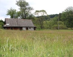 Działka na sprzedaż, Łodyna, 30 m²