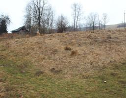 Działka na sprzedaż, Olszanica, 3000 m²