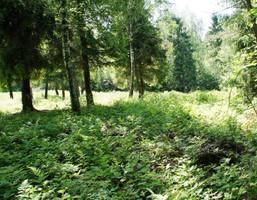 Działka na sprzedaż, Strzebowiska, 10000 m²