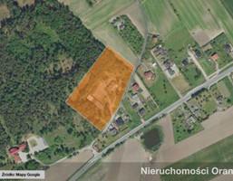 Komercyjne na sprzedaż, Szubin-Wieś, 1175 m²