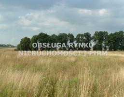Działka na sprzedaż, Kozłówka, 10020 m²