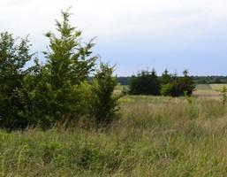 Działka na sprzedaż, Kleśniska, 4747 m²