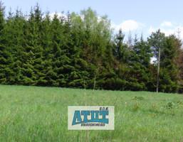 Działka na sprzedaż, Adamowizna, 4300 m²