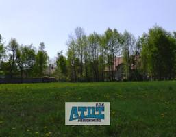 Działka na sprzedaż, Adamowizna, 6000 m²