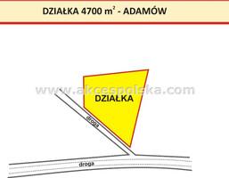 Działka na sprzedaż, Wola Pieczyska, 4700 m²