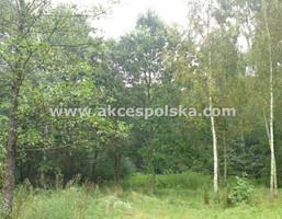 Działka na sprzedaż, Nowy Prażmów Leśna, 3100 m²