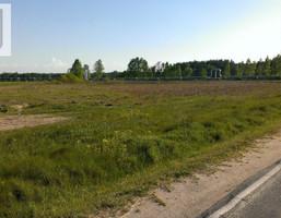 Działka na sprzedaż, Polkowice Chocianowska, 9192 m²