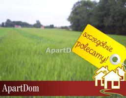 Działka na sprzedaż, Siedlec, 4400 m²