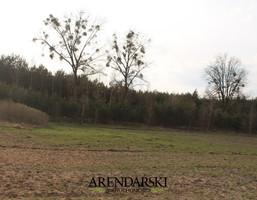 Działka na sprzedaż, Ściechów, 5300 m²