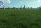 Działka na sprzedaż, Stare Opole Stare Opole, 4300 m²