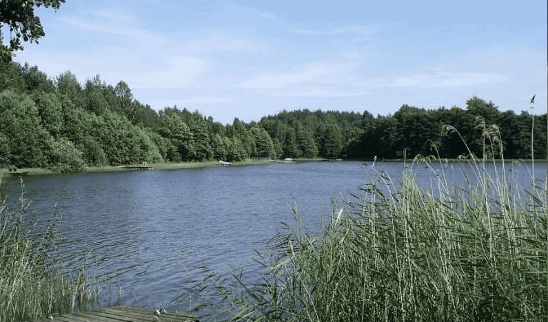 Działka na sprzedaż, Niepoczołowice, 1500 m² | Morizon.pl | 3887