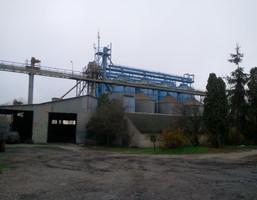 Fabryka, zakład na sprzedaż, Staw, 3050 m²