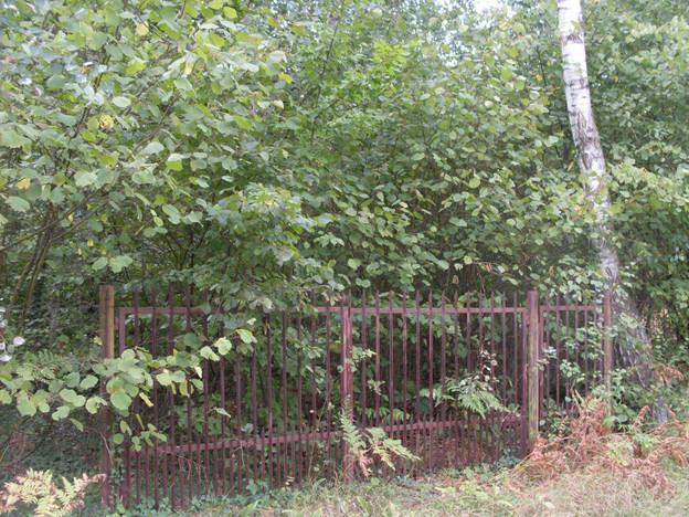 Działka na sprzedaż, Sokolniki-Las, 4666 m² | Morizon.pl | 8694