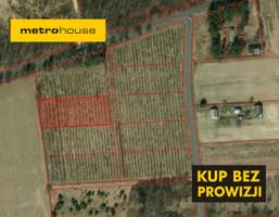 Działka na sprzedaż, Kaliłów, 3163 m²
