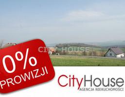 Działka na sprzedaż, Owiesno, 43200 m²