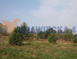 Działka na sprzedaż, Droszków, 2526 m²