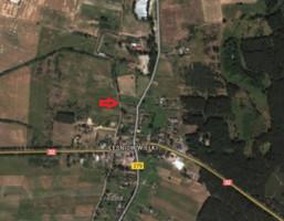 Działka na sprzedaż, Leśniów Wielki, 8200 m²