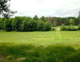 Działka na sprzedaż, Lgiń, 48325 m²