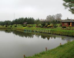 Handlowo-usługowy na sprzedaż, Niemcza, 40000 m²