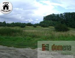Działka na sprzedaż, Święty Wojciech Kęszyca-Kolonia, 1000 m²