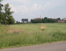 Działka na sprzedaż, Paszkówka, 8000 m²