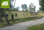 Magazyn do wynajęcia, Zabrze Mikulczyce, 251 m²