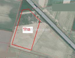 Działka na sprzedaż, Gniezno, 10006 m²