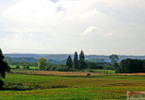 Działka na sprzedaż, Jelenino, 54300 m²
